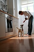 Side profile of man feeding dog in kitchen