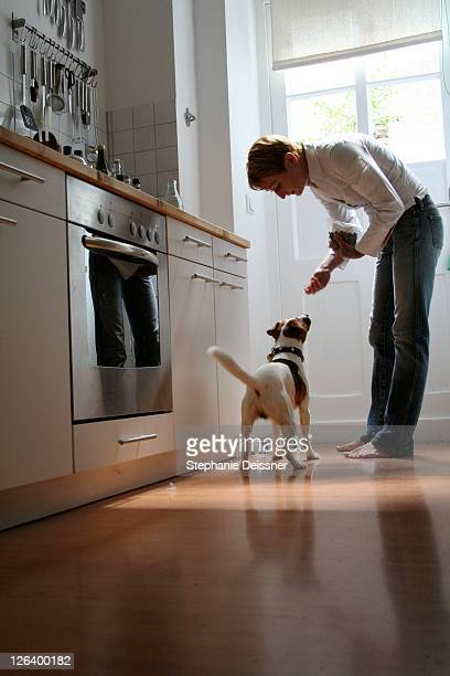 Side profile of man feeding dog in kitchen