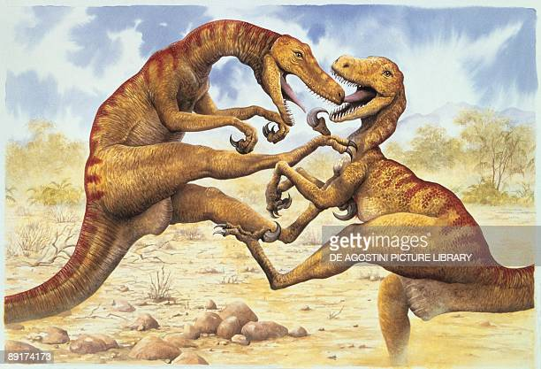 Side profile of two utahraptors fighting
