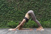 side view of beautiful young woman practicing yoga in Downward-Facing Dog (Adho Mukha Svanasana) pose in front of wall covered with green leaves