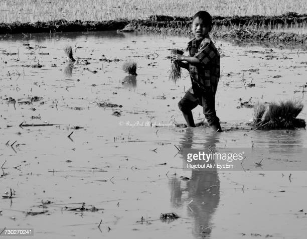Side View Of Boy Working At Rice Paddy
