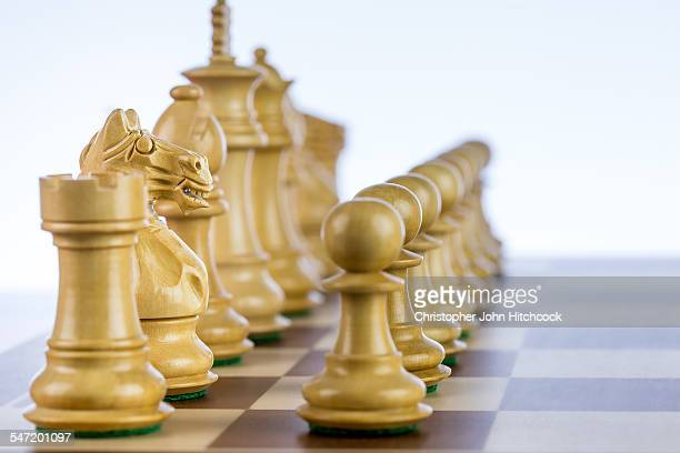 A side view of chess pieces lined up on the board, ready to play, with the focus on the knight.
