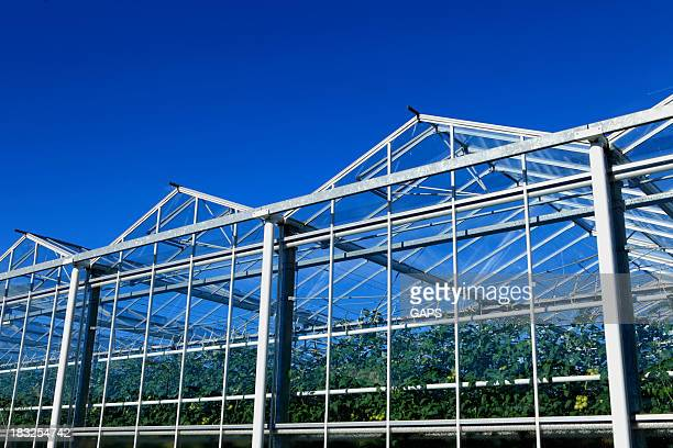 sideview of an agricultural greenhouse