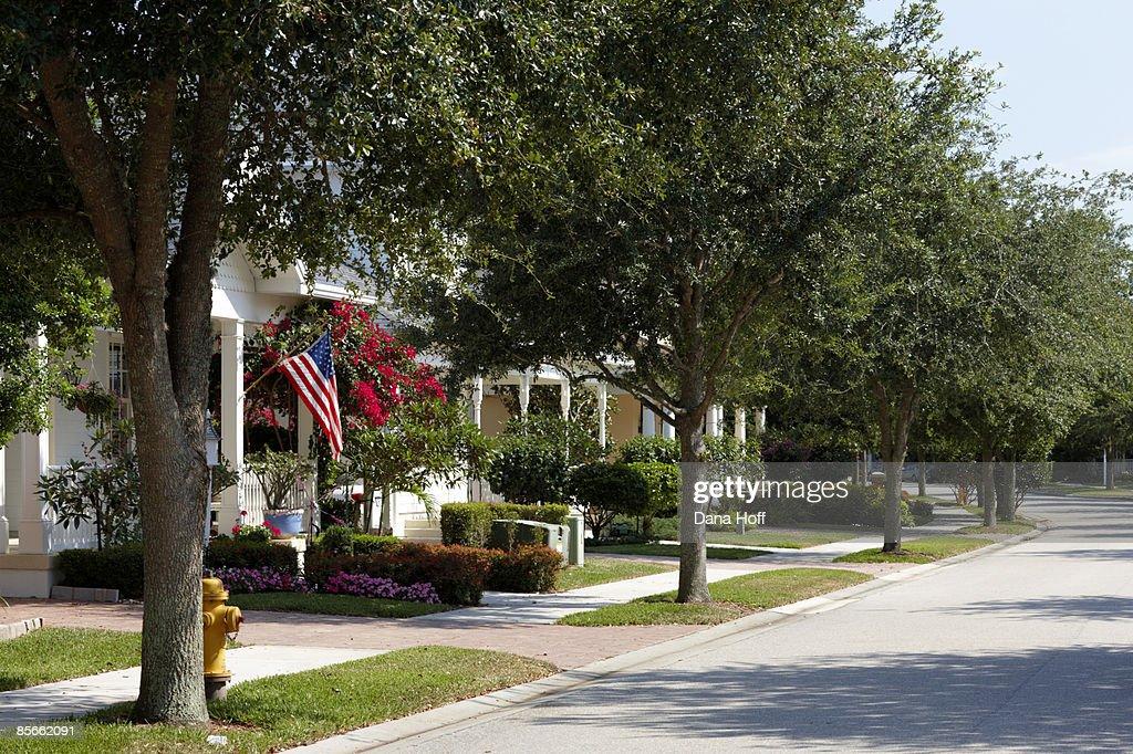 Sidewalk on tree-lined street