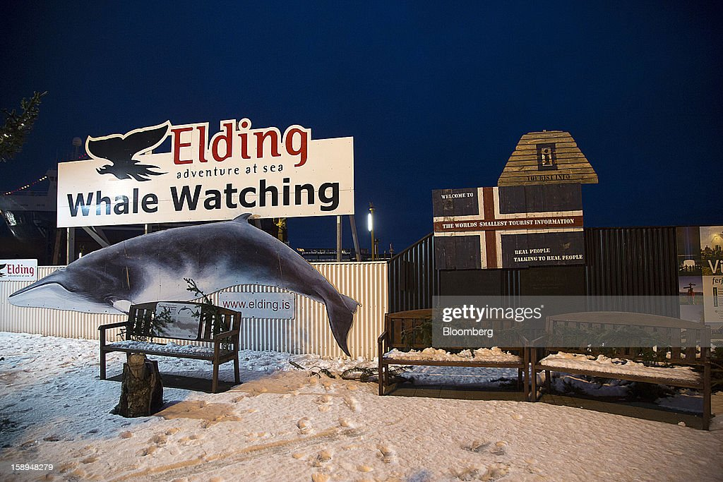 A sign advertises tourist whale watching sea tours by Elding at the harbor in Reykjavik, Iceland, on Tuesday, Jan. 1, 2013. Iceland's inflation rate eased in December as central bank efforts to stabilize the krona with interest rate increases paid off. Photographer: Arnaldur Halldorsson/Bloomberg via Getty Images