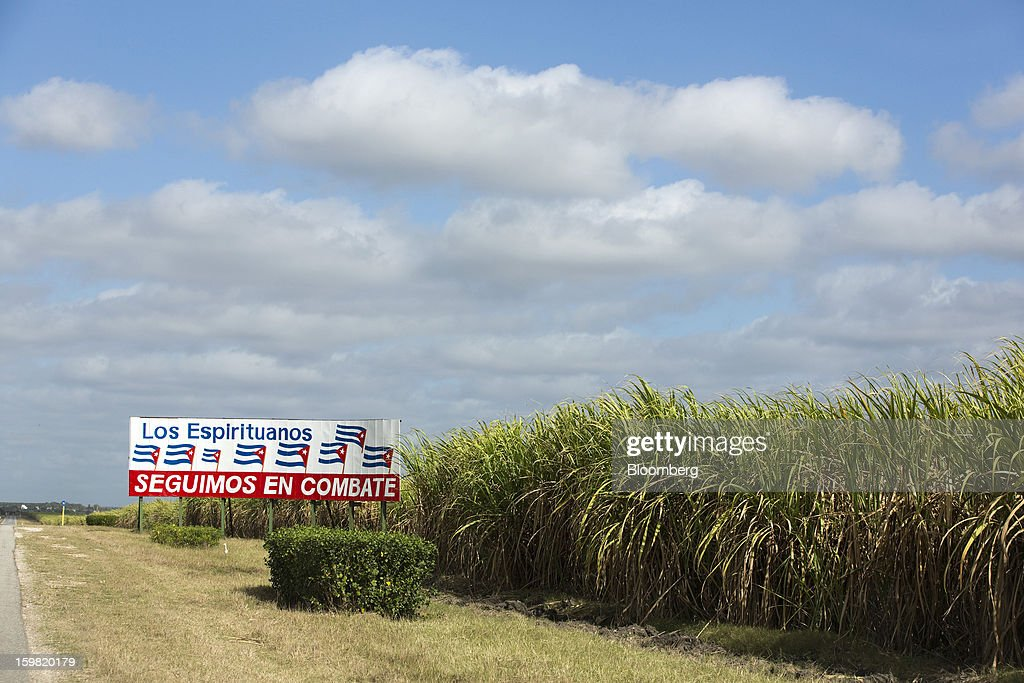 A sign decorated with Cuban flags reads 'Still in combat' in a field of sugarcane near Jatibonico, Cuba, on Sunday, Jan. 13, 2013. Sugar prices fell 16 percent last year as global supplies are forecast to outpace demand for a third year in 2012-13, according to the London-based International Sugar Organization. Photographer: Andrey Rudakov/Bloomberg via Getty Images