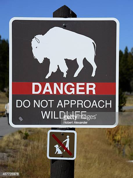 A sign in Yellowstone National Park warns visitors to not approach bison and other wildlife in the park