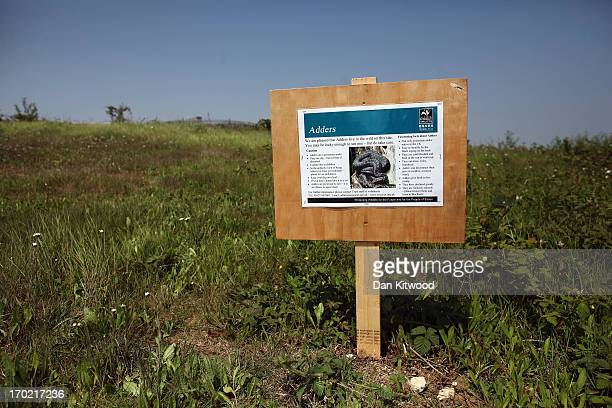 A sign informs visitors of Adders at 'Thurrock Thameside Nature Park' on June 6 2013 in Thurrock England The 120 acres of grass bramble and shrub...