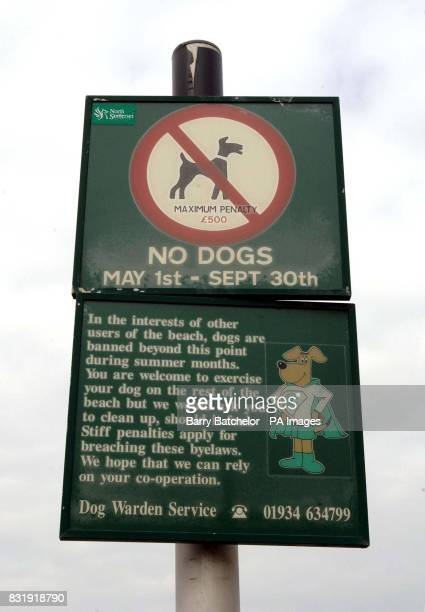 A sign located near Clevedon Pier in North Somerset that keeps Oscar and other dogs from this area of the beach from May 1 to September 30