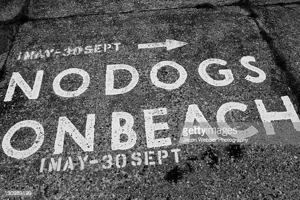 Sign of 'no dogs on beach'