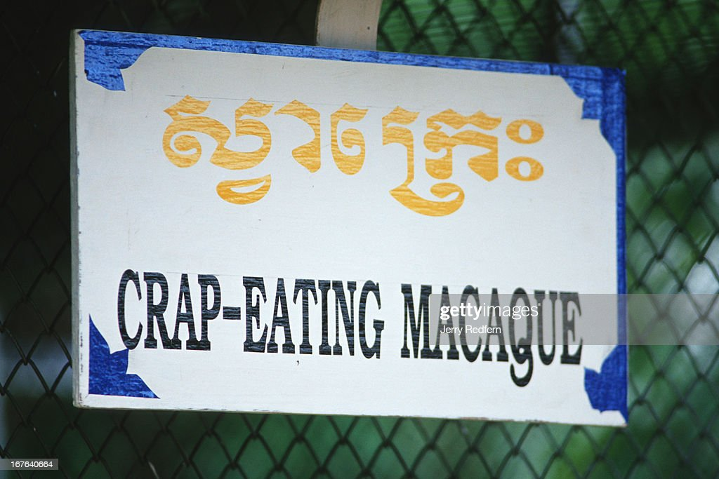 A sign on a cage misidentifies several crabeating Macaques at the Koh Kong Safari World Crabeating Macaques are also known as longtailed Macaques Koh...