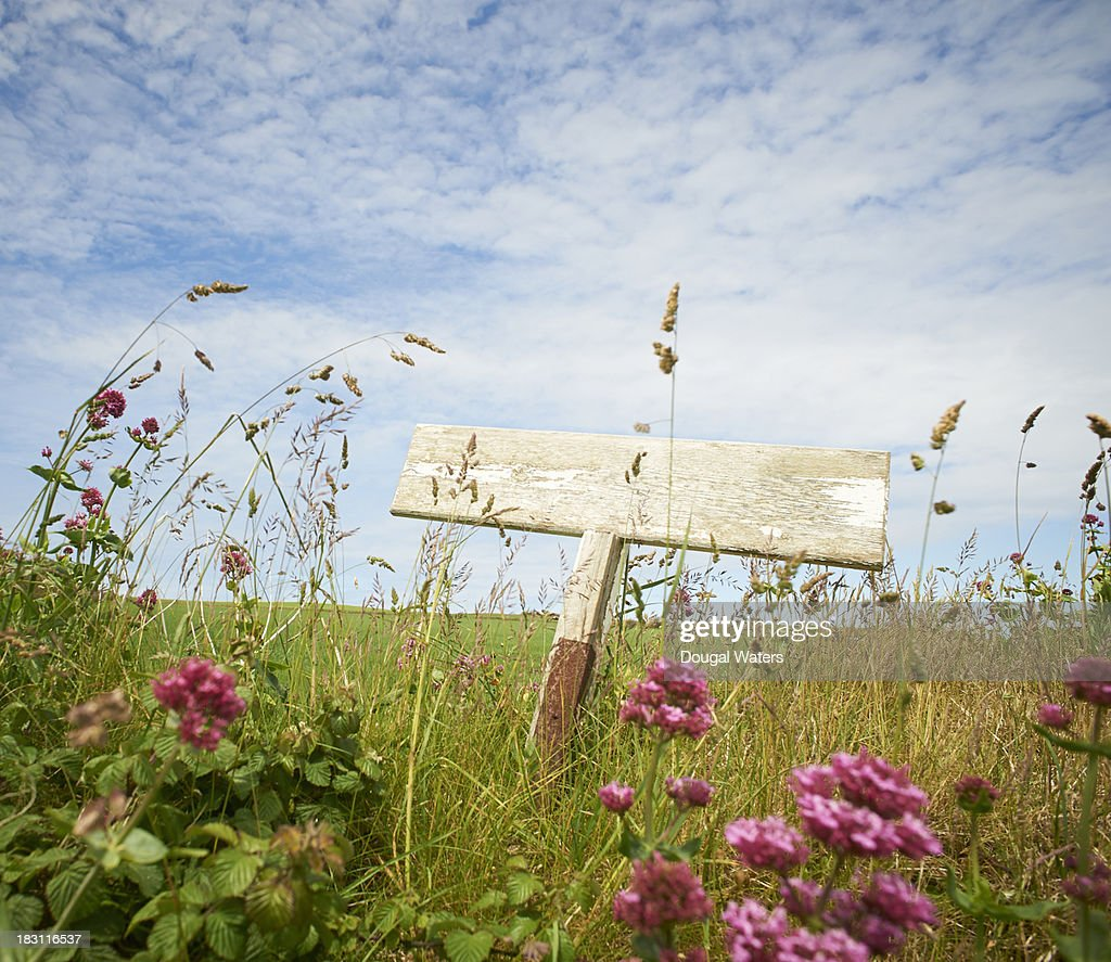 Sign post in idyllic countryside : Stock Photo