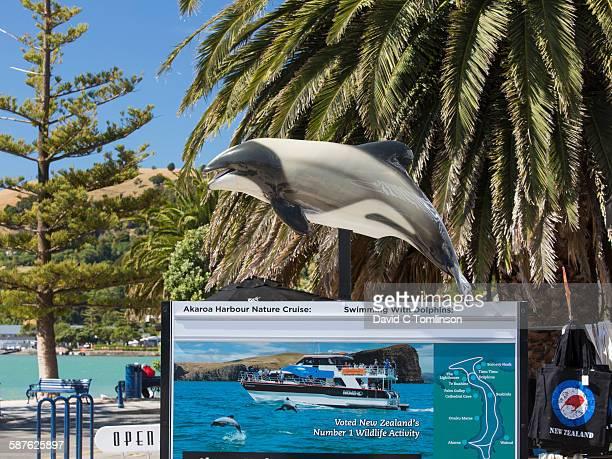 Sign promoting harbour nature cruises, Akaroa