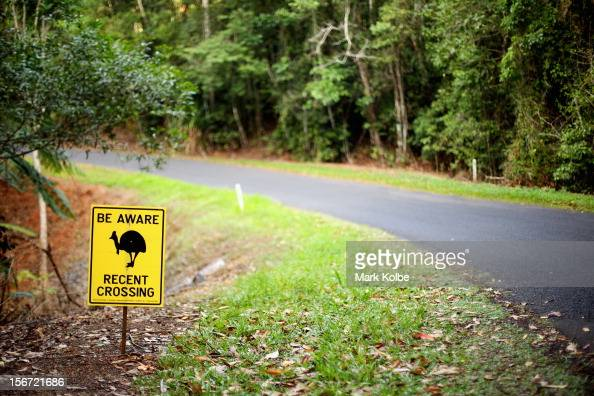 A sign warning drivers to be aware of cassowary birds is seen on the road side on November 14 2012 in Kuranda Australia Located in Far North...