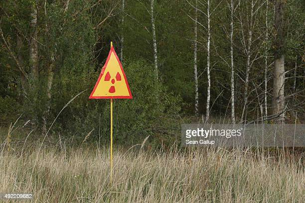 A sign warns of radiation at the 'red forest' near the former Chernobyl nuclear power plant on September 29 2015 near Chornobyl Ukraine On April 26...