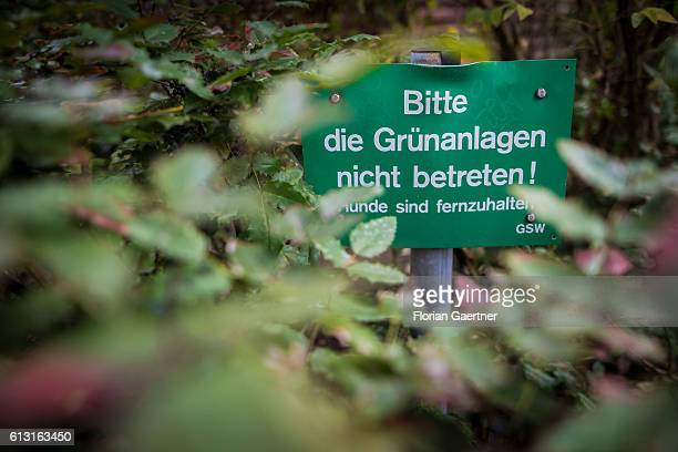 A sign with 'Please do not enter the green area' is placed in the middle of a bush on October 07 2016 in Berlin Germany