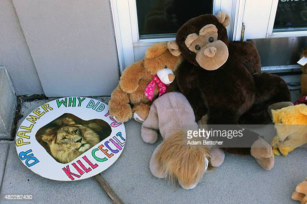 Signs and stuffed toy animals are placed at a memorial for Cecil the lion in the parking lot of Dr Walter Palmer's dental clinic on July 29 2015 in...