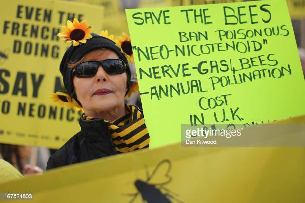 Signs are held aloft as bee campaigners demonstrate on Parliament Square on April 26 2013 in London England Over a hundred campaigners including...