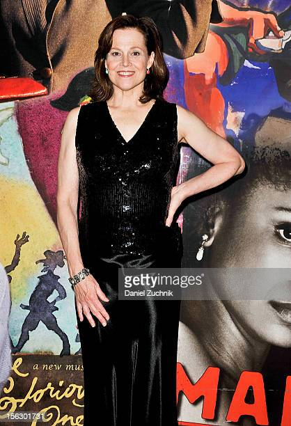 Sigourney Weaver attends the 'Vanya and Sonia and Masha and Spike' press night at Mitzi E Newhouse Theater on November 12 2012 in New York City