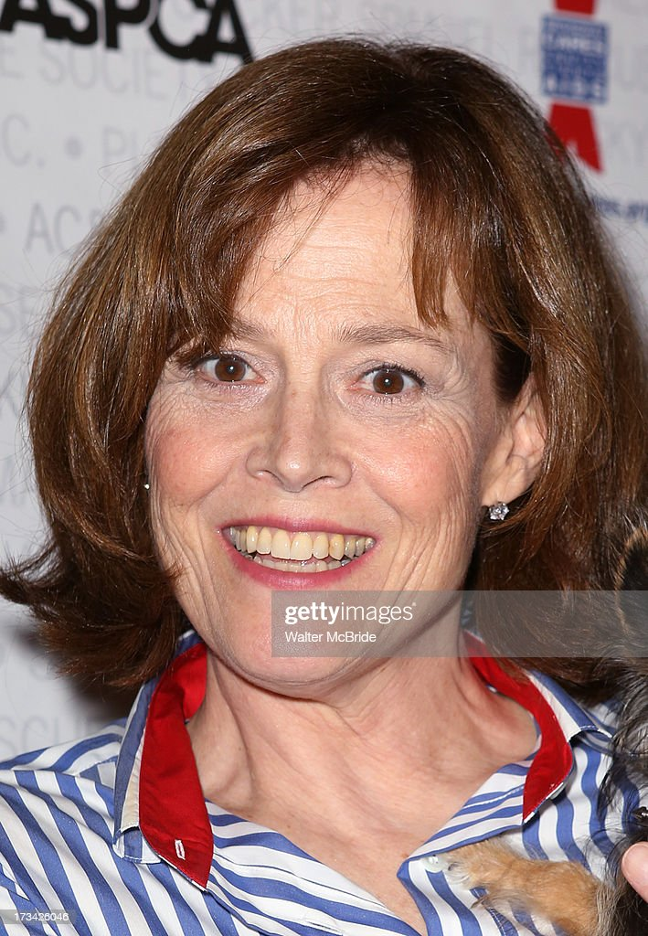 <a gi-track='captionPersonalityLinkClicked' href=/galleries/search?phrase=Sigourney+Weaver&family=editorial&specificpeople=201647 ng-click='$event.stopPropagation()'>Sigourney Weaver</a> backstage during Broadway Barks 15 in Shubert Alley on July 13, 2013 in New York City.