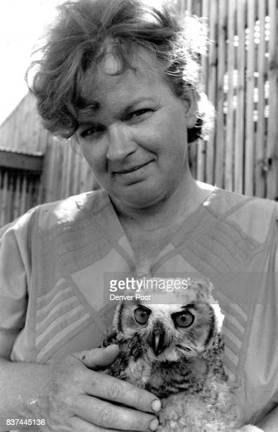 Sigrid Ueblacker with orphaned great horned owl 'Mark' see color caption for more details thnksDD Credit The Denver Post