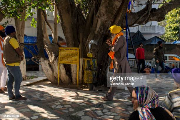 Sikh prays during Hola Mohalla festival Hola Mohalla is a threeday festival started by the tenth Sikh Guru Govind Singh for the Nihangs to display...