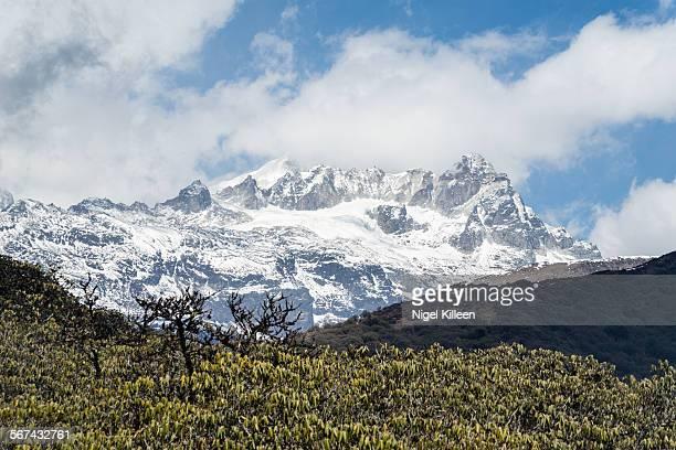 Sikkim Himalayas,
