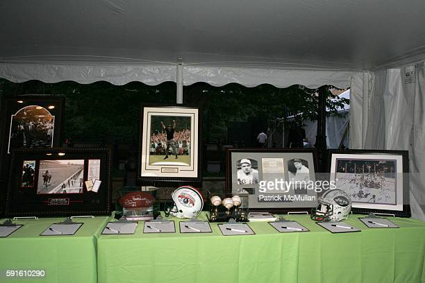 Silent Auction attends A Magical Evening with New York's Finest Chefs at 'Taste of Summer' A Benefit for the Central Park Conservancy at Naumburg...