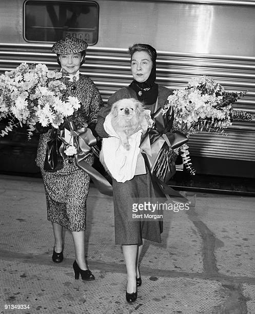 Silent film stars Dorothy and Lillian Gish are greeted at a train station with large bouquets of flowers 1950s