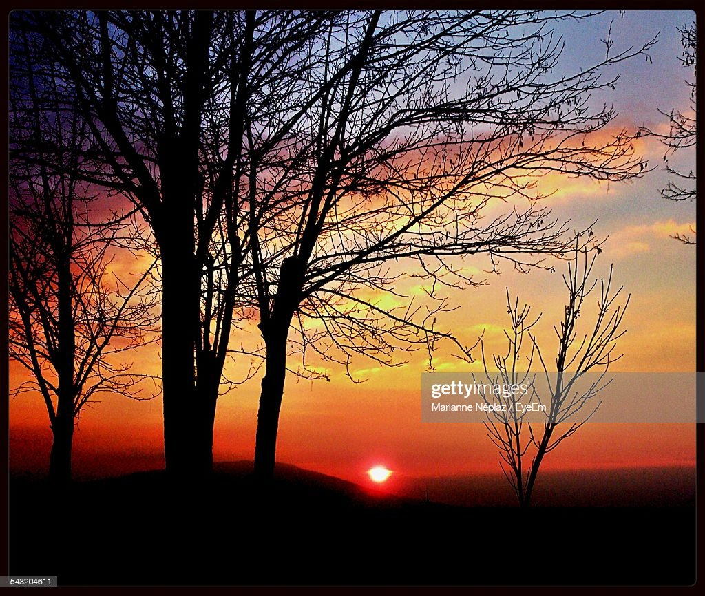 Silhouette Bare Trees Against Cloudy Sky At Sunset