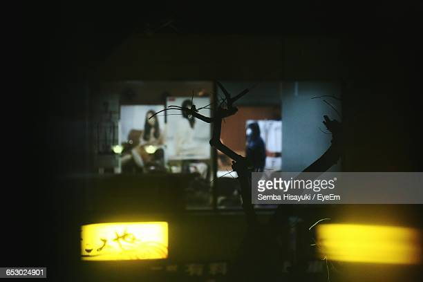 Silhouette Branch By Illuminated Lights Against Hair Salon At Night