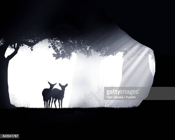 Silhouette Deer In Forest During Foggy Weather