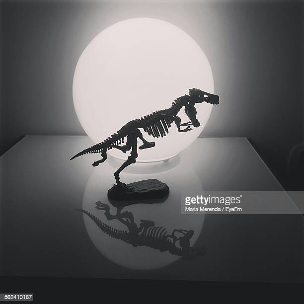Silhouette Dinosaur Skeleton Against Illuminated Lamp On Table