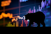 silhouette form of bear on financial stock market graph represent stock market crash or down trend investment