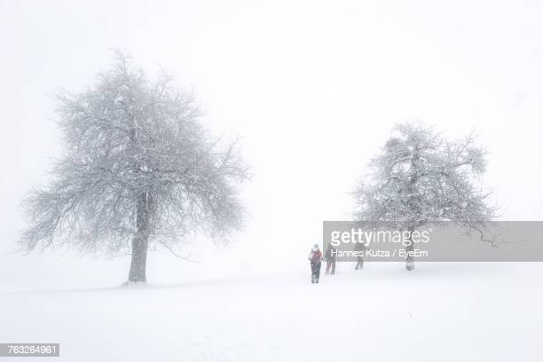 Silhouette Friends Walking On Snow Covered Landscape During Snowfall