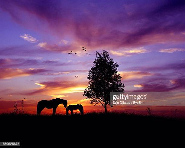 Silhouette Horses On Grassy Field Against Dramatic Sky