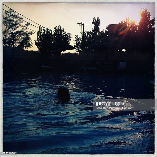 Silhouette Man Swimming On Pool By Trees Against Clear Sky