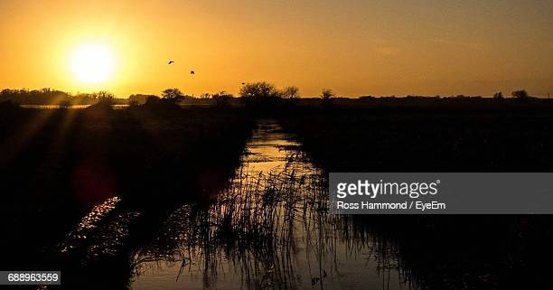 Silhouette Marshy Field Against Sky During Sunset