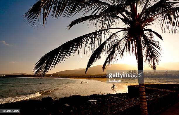 silhouette of a beach