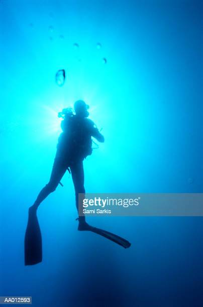 Silhouette of a Diver