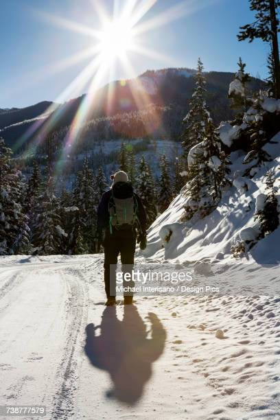 Silhouette of a female walking along a snow covered road with snow covered evergreen trees, shadow of the walker and sun burst with blue sky