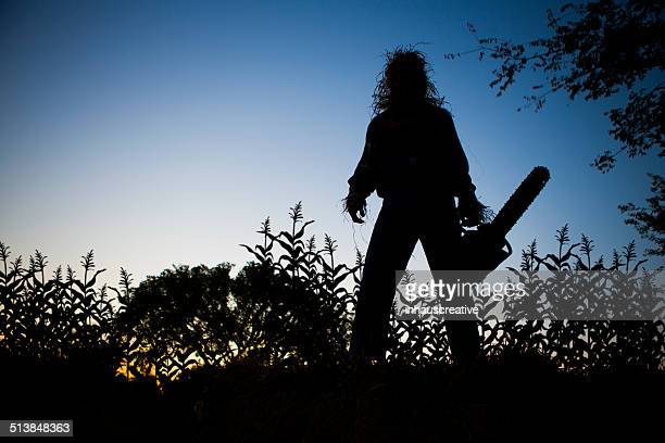 Silhouette of a Scarecrow in cornfield