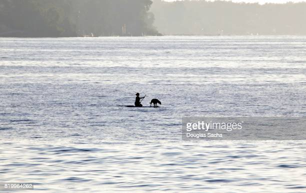 Silhouette of a young lady and her pet dog paddle boarding on the Lake Erie, Rocky River, Ohio, USA