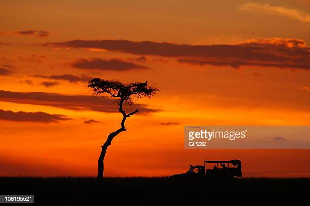 SIlhouette of African Safari Vehicle during Sunset