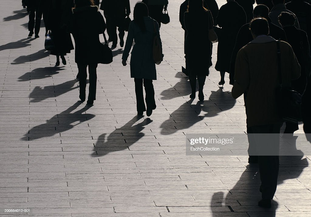 Silhouette of business people walking, rear view : Stock Photo