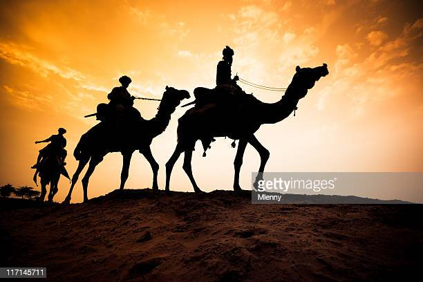 Silhouette of Camel Caravan at Desert Sunset