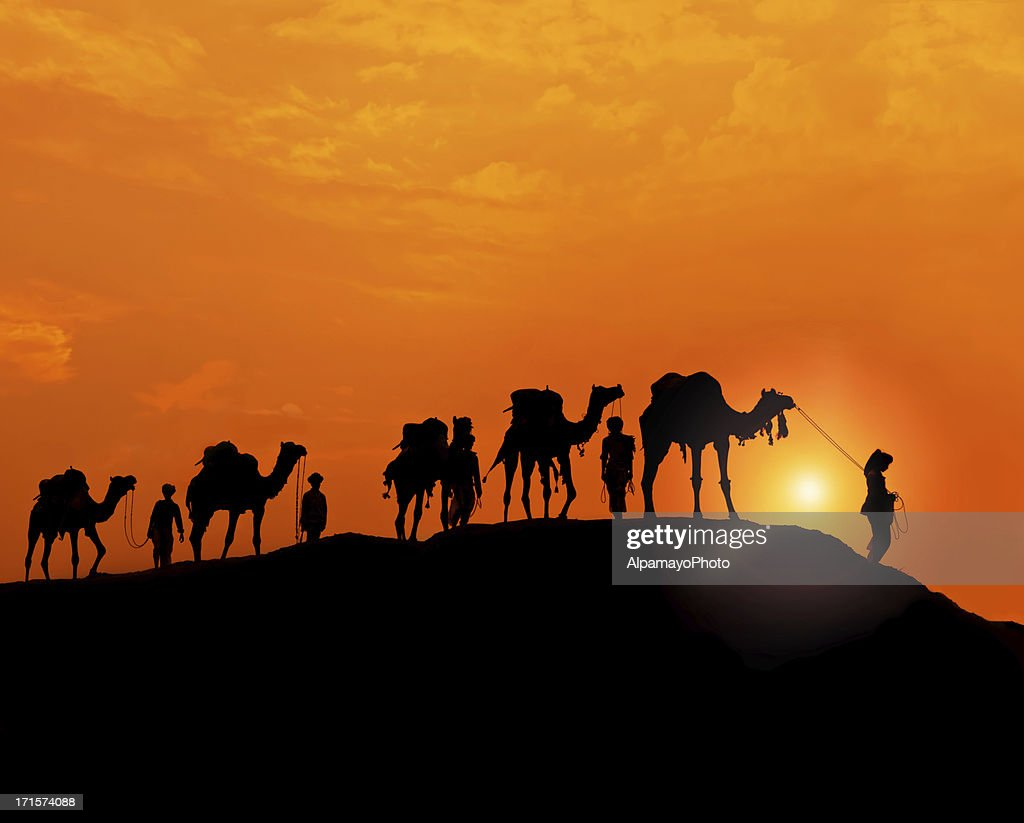 Silhouette Of Camel Caravan In The Desert At Sunset Stock ...