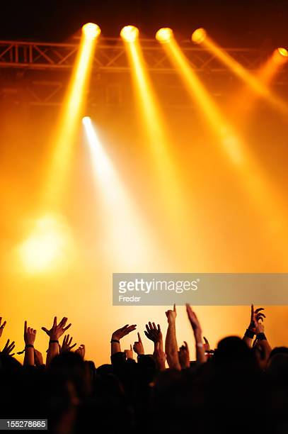Silhouette of concert crowd against yellow lighting
