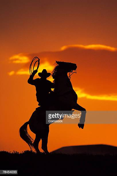 Silhouette of cowboy on horse rearing up