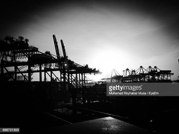 Silhouette Of Cranes
